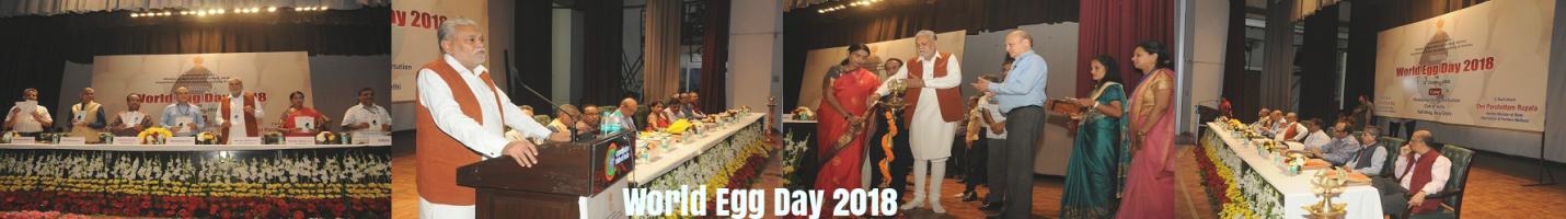 egg day 2018